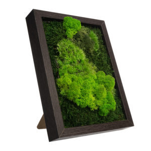 Table Moss Art