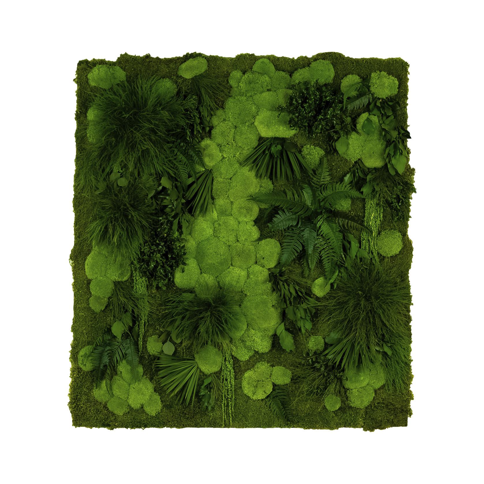 Wall Moss Art